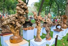 Legno asciutto dell'albero in varia arte di forme meravigliosamente esibita in molla del congresso Immagini Stock Libere da Diritti