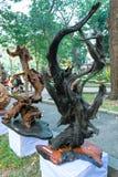 Legno asciutto dell'albero in varia arte di forme meravigliosamente esibita in molla del congresso Immagine Stock