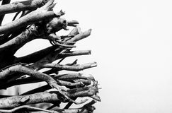 Legno in bianco e nero della spiaggia su fondo bianco Fotografie Stock Libere da Diritti