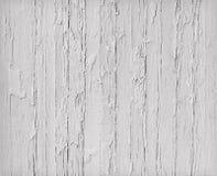 Legno bianco stagionato Immagini Stock Libere da Diritti