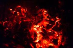 Legno bruciante del fuoco Immagine Stock