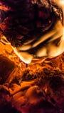 Legno bruciante nella fornace Immagine Stock