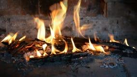 Legno bruciante reale video d archivio