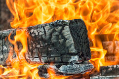 Legno bruciato Immagini Stock Libere da Diritti