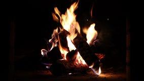 Legno Burning nel camino stock footage