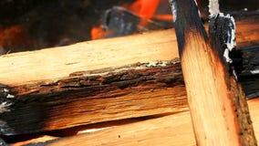Legno Burning nel camino video d archivio