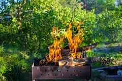 Legno Burning in un addetto alla brasatura Forte fuoco nella griglia immagini stock libere da diritti