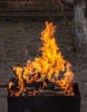 Legno Burning in un addetto alla brasatura Forte fuoco nella griglia immagini stock