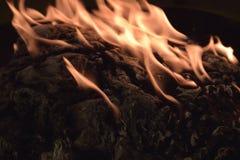Legno che brucia in fuoco immagine stock