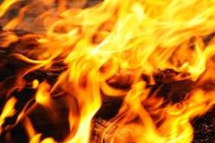 Legno che brucia nel fuoco Fotografia Stock Libera da Diritti