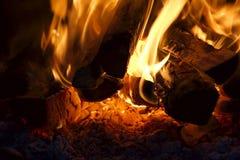 Legno che brucia sul fuoco Fotografia Stock Libera da Diritti