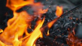 Legno che brucia sul fuoco Le scintille del fuoco rosso stanno volando su Particelle d'ardore brucianti Colpo del movimento lento video d archivio