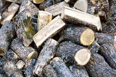 Legno del fuoco della quercia Immagini Stock