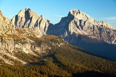 Legno del larice e Le Tofane Gruppe, Dolomiti, Italia Fotografia Stock
