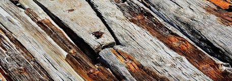 Legno della deriva Fotografia Stock