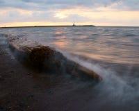 Legno della deriva del lago Superiore Immagine Stock Libera da Diritti