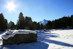 Legno della montagna Immagini Stock Libere da Diritti