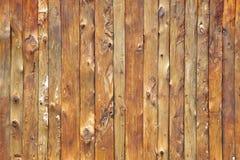 legno della parete Immagine Stock Libera da Diritti