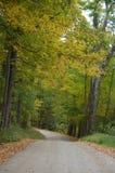 legno della strada della ghiaia di autunno Fotografia Stock