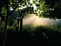 Legno di alba in Holbæk Fotografie Stock