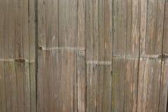 Legno di bambù della parete Immagine Stock