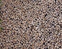 Legno di betulla nel woodpile Immagini Stock