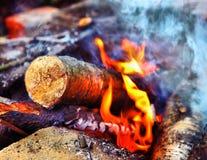 Legno di betulla sulla fiamma del fuoco Fotografia Stock Libera da Diritti