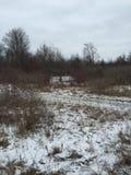 Legno di inverni Fotografia Stock