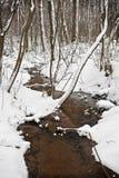 legno di inverno Fotografia Stock