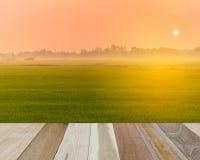 Legno di Perspcetive con landspace Fotografia Stock
