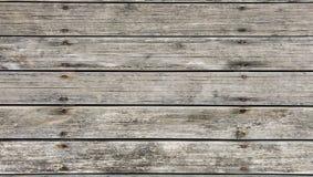 Legno di pino all'aperto Fotografie Stock Libere da Diritti