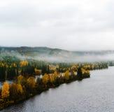 Legno drammatico quadrato della Norvegia nel paesaggio della nebbia Immagine Stock Libera da Diritti