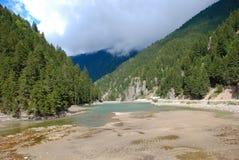 Legno e fiume di pino Fotografie Stock