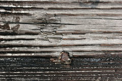 Legno esposto all'aria Fotografia Stock Libera da Diritti