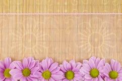 Legno, fondo di vimini con il nastro rosa e fiore Fotografia Stock