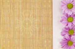 Legno, fondo di vimini con il nastro rosa e fiore Immagine Stock