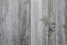 Legno grigio Fotografie Stock Libere da Diritti