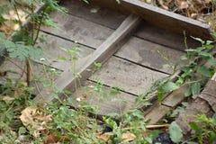 Legno isolato Fotografie Stock