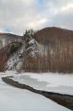 Legno landscape-3 di inverno Fotografie Stock