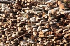 Legno Legna da ardere per l'inverno Drovav tagliato piegato Fotografie Stock Libere da Diritti