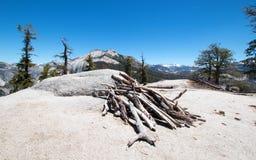 Legno morto impilato alla base di sotto cupola accanto alla mezza cupola in parco nazionale di Yosemite in California Fotografia Stock Libera da Diritti