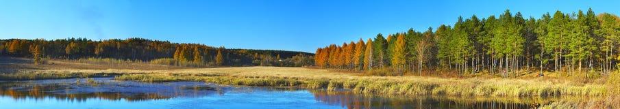 Legno, natura del fiume nell'Estremo Oriente Immagine Stock