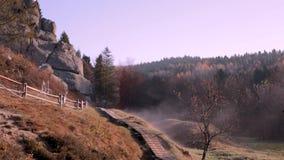 Legno nebbioso alla mattina di autunno stock footage