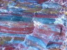 Legno petrificato Immagini Stock Libere da Diritti