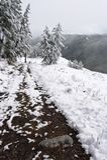 Legno, strada e neve bianchi. fotografia stock