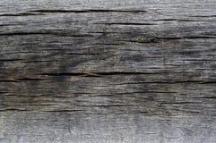 Legno (struttura) Fotografie Stock
