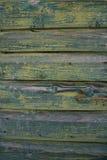 Legno verde Immagini Stock