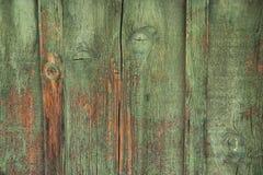 Legno verde stagionato Immagini Stock Libere da Diritti