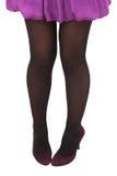 Legs. Elegant woman legs isolated on white Stock Photography