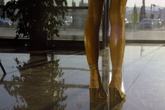 Legs 2 Royalty Free Stock Images